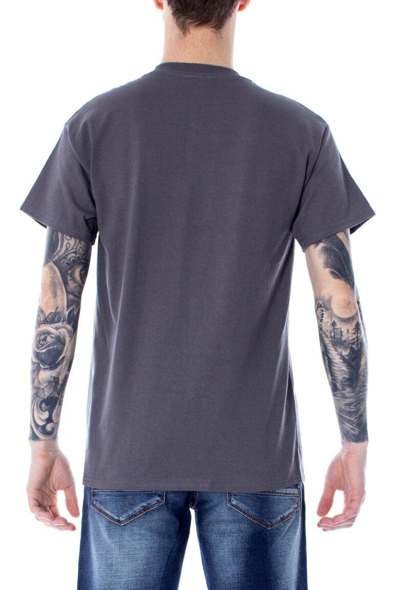 T-shirt Thrasher FLAME LOGO COLOR Grigio - Foto 2